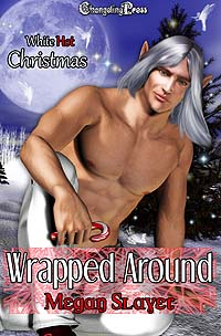 Wrapped Around (White Hot Christmas) by Megan  Slayer