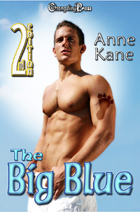 2nd Edition: The Big Blue (Protect and Serve) by Anne  Kane