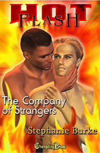 In The Company of Strangers by Stephanie  Burke