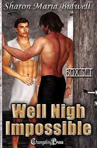 Well Nigh Impossible (Box Set) by Sharon Maria  Bidwell