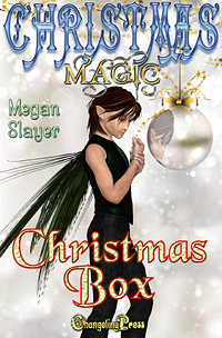 Christmas Box (Christmas Magic) by Megan Slayer (Excerpt)