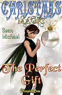 The Perfect Gift (Christmas Magic) by Sean Michael (Excerpt)