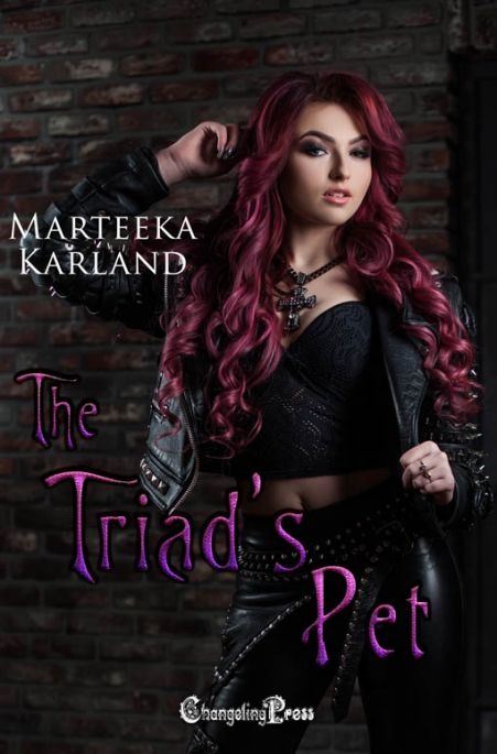 The Triad's Pet (The Outcasts 2)