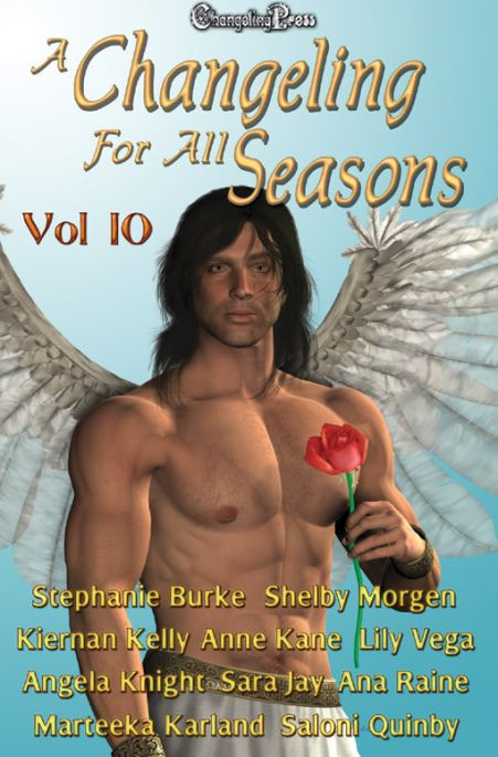 A Changeling For All Seasons 10 (Changeling Seasons (ebook) 10)