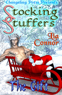 The Gift (Stocking Stuffers) by Lia  Connor