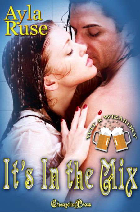 It's In The Mix (Wit & Wizardry Multi-Author 3)