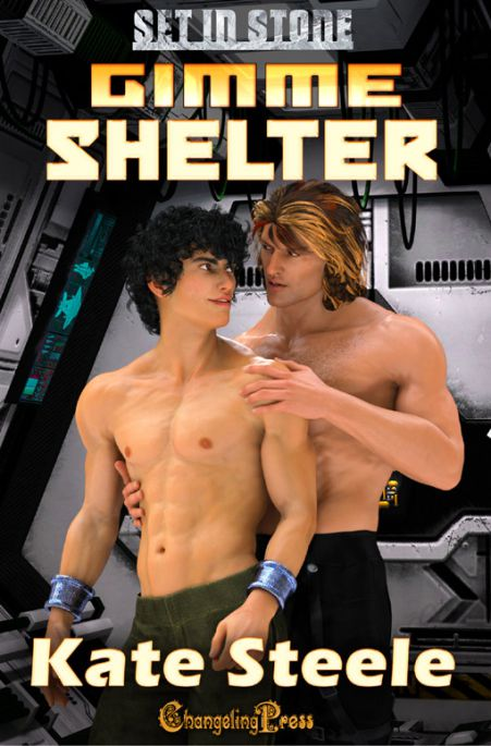 Gimme Shelter (Set In Stone Multi-Author 8)