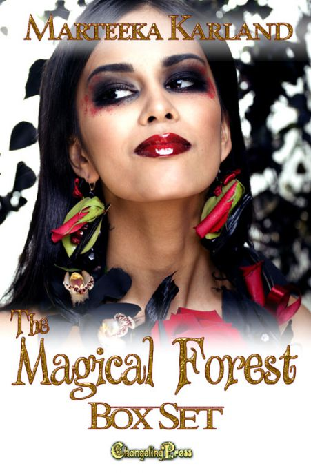 The Magical Forest (Box Set) (The Magical Forest 5)