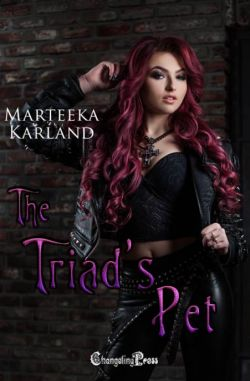 The Triads Pet (The Outcasts 2)