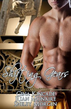 Shifting Gears (AIDP Anthology)