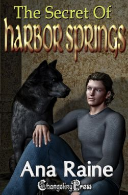 The Secret of Harbor Springs (Hidden Oaks 2)