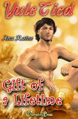 Gift of a Lifetime (Yule Tied 3)