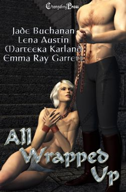 All Wrapped Up Vol. 3 (All Wrapped Up Multi-Author 15)