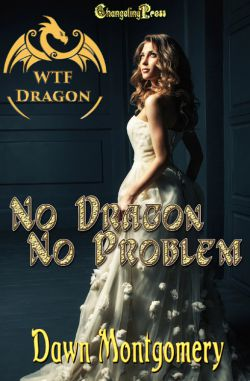 No Dragon, No Problem (WTF Dragon 1)