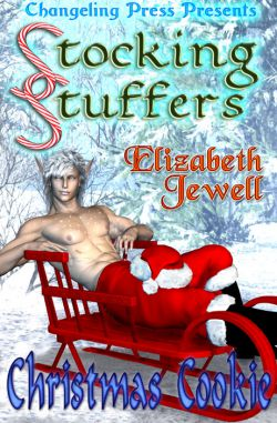 Christmas Cookie (Stocking Stuffers Multi-Author 4)