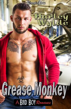 Spotlight: Grease Monkey (A Bad Boy Romance 1)