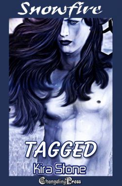 Tagged (Snowfire Multi-Author 2)