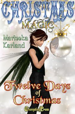 Twelve Days of Christmas (Christmas Magic 5)
