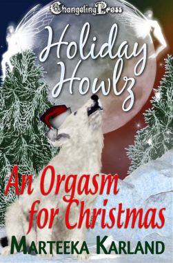 An Orgasm for Christmas (The Magical Forest 3)