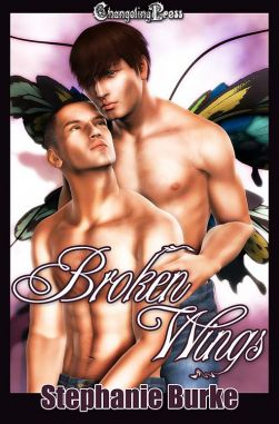 Broken Wings (Angel Falls 1)