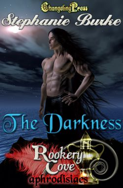 The Darkness (Rookery Cove Multi-Author 5)
