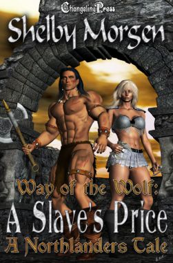 A Slave's Price (The Northlanders 1)